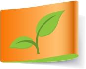 Green ( Eco Friendly )