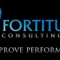 Fortitude Consulting, LLC
